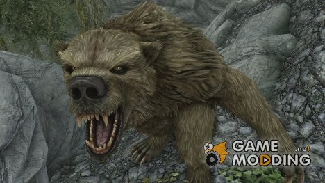 Werebears Found in Skyrim for TES V Skyrim