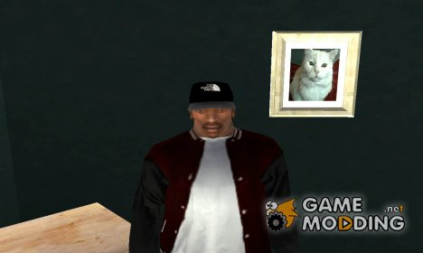 Кепка The North Face для GTA San Andreas