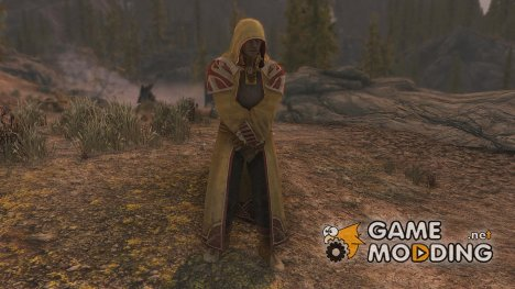 The Real Mages Armor для TES V Skyrim