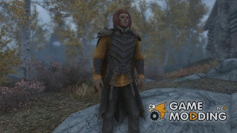 Vampire Royal Armor Retexture for TES V Skyrim