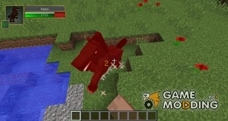 Damage Indicators for Minecraft