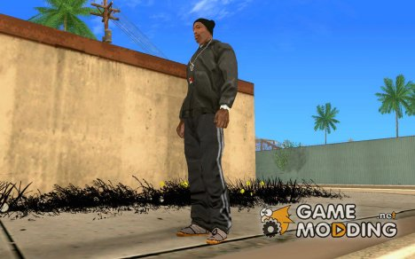ADIO SHOES for GTA San Andreas