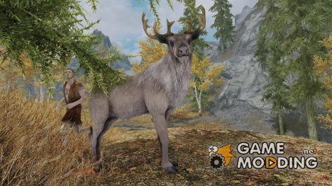 Summon Forest Mounts and Followers for TES V Skyrim