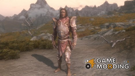 Light Chitin Plate Armor for TES V Skyrim
