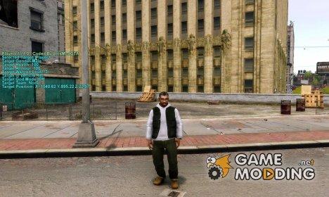 Информация о игроке for GTA 4