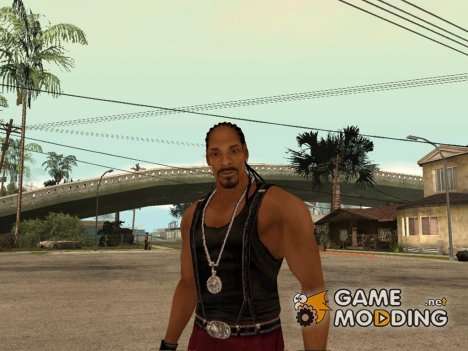 "Snoop Dogg ""Def Jam Fight for New York"" for GTA San Andreas"
