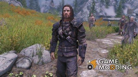 Guild Master Heavy Armor Replacer for TES V Skyrim