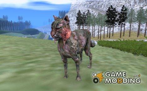 Кот из S.T.A.L.K.E.R! for GTA San Andreas