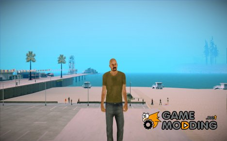 Vwmycd for GTA San Andreas