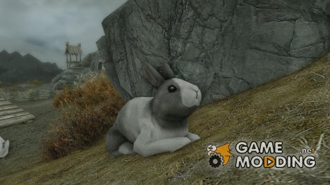 Summon Bunnies Mounts and Followers для TES V Skyrim