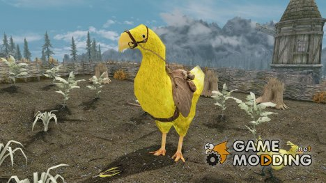 Chocobos Mounts and Followers для TES V Skyrim