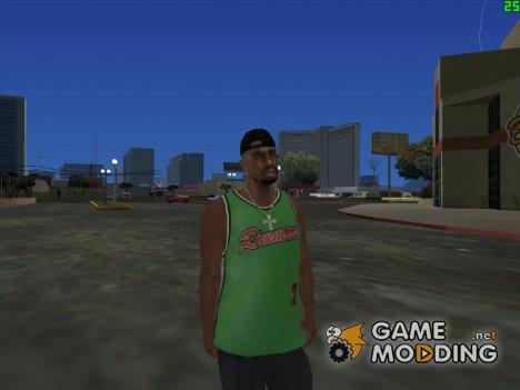 INSANITY fam3 для GTA San Andreas