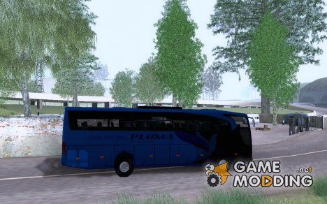 MB Travego Skin Pluma для GTA San Andreas
