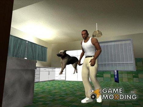 Собака (SH DP) для GTA San Andreas