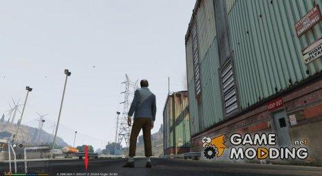 Show Coordinates v2.0 для GTA 5