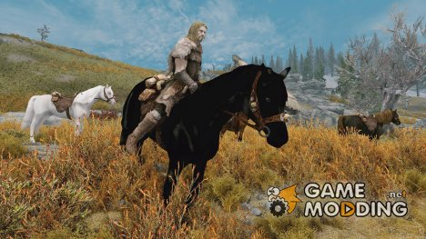 Swift Steeds New Light Breed Horses non replacer for TES V Skyrim