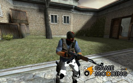 anarchy phoenix(first skin) для Counter-Strike Source