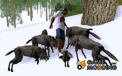 Wolves in the forest v.3 (Final version) для GTA San Andreas