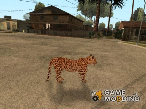 Leopard for GTA San Andreas