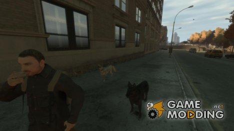 Собаки for GTA 4