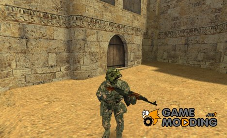 Gign for Counter-Strike 1.6