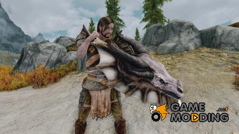 Elite Dragon Shield для TES V Skyrim