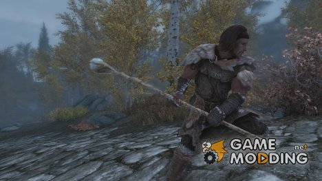 Fighting Mage Staff for TES V Skyrim