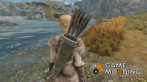 Other Arrows - The Archer Mod для TES V Skyrim
