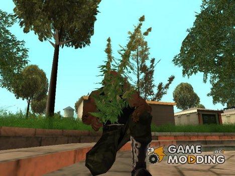 Bush cannabis для GTA San Andreas