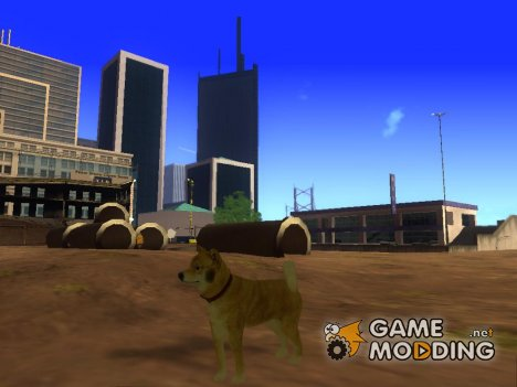 DOGE for GTA San Andreas