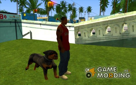 Ryders Pet Dog for GTA San Andreas