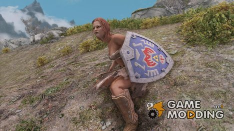 The Legend of Zelda - Terminan Shield for TES V Skyrim