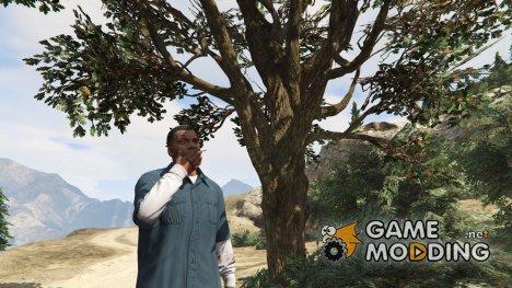 Пить и Курить для GTA 5