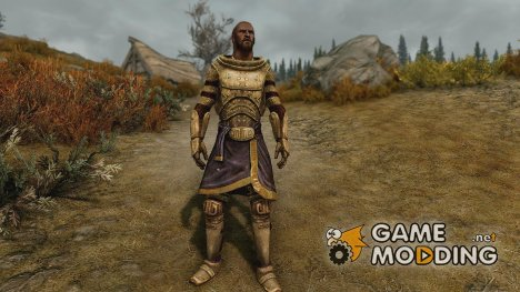 Medium and Light Dwarven Armor for TES V Skyrim