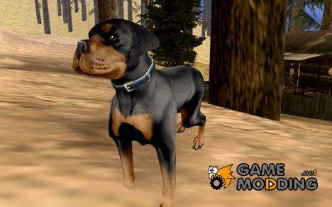 Лесник v 1.0 for GTA San Andreas