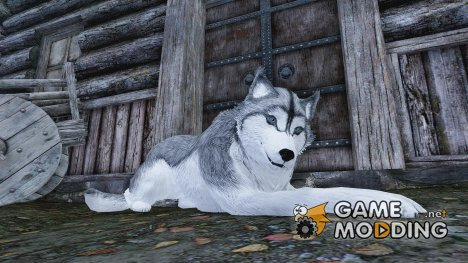 Summon Huskies and Co - Mounts and Followers для TES V Skyrim