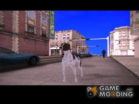Курцхаар для GTA San Andreas